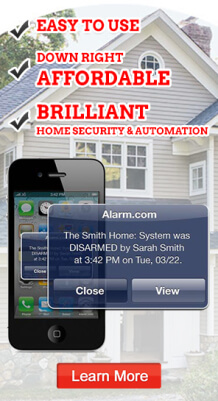 Home security and automation
